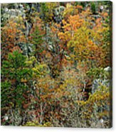Prarie Hollow Gorge In Autumn Acrylic Print