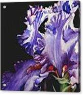 Pretty In Purple Acrylic Print