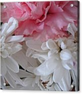 Pretty Pastel Petals Acrylic Print by Yvonne Scott