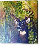 Pride Acrylic Print