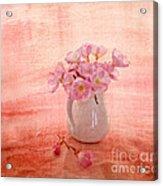 Primroses D'orange Acrylic Print by Linde Townsend