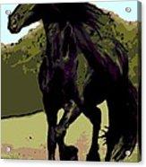 Prince Of Equus Acrylic Print