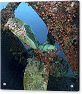 Propeller Of Hilma Hooker Shipwreck Acrylic Print