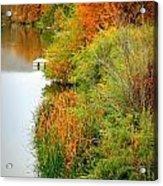 Prosser Autumn Docks Acrylic Print by Carol Groenen