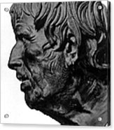Pseudo-seneca Acrylic Print