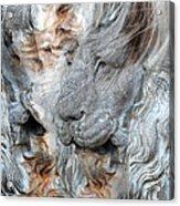 Psyche Acrylic Print by Elizabeth Hart