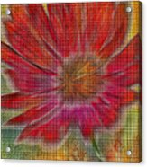 Psychedelic Flower Acrylic Print