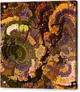 Psychedelic Fungi Acrylic Print