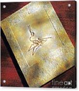 Pterodactylus Elegans Acrylic Print