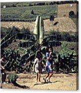 Puerto Rico. Children Of Tenant Acrylic Print