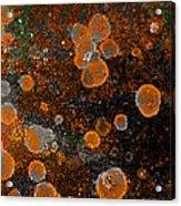 Pumpkin Abstract Square Acrylic Print