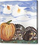 Pumpkin And Puppies Acrylic Print by Pamela Wilson