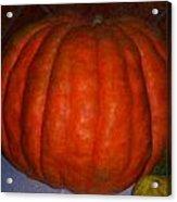 Pumpkin In Spain Acrylic Print