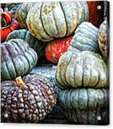 Pumpkin Pile II Acrylic Print