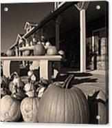 Pumpkins At The Farm Market October Acrylic Print
