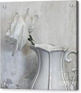 Pure White Acrylic Print by Marsha Heiken