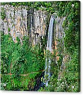 Purlingbrook Falls In Australia Acrylic Print
