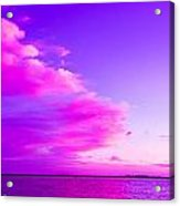 Purple And Pink Acrylic Print