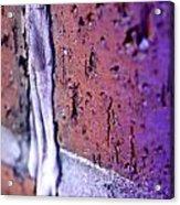 Purple Damage. Acrylic Print