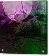 Purple Moon Acrylic Print by Ann Powell