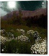 Purple Mountain Meadow Acrylic Print