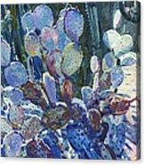 Purple Opuntia Acrylic Print