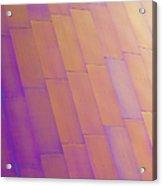 Purple Orange Two Acrylic Print