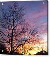 Purple Sunset Acrylic Print