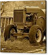Put Out But Not Abandoned In Sepia Acrylic Print
