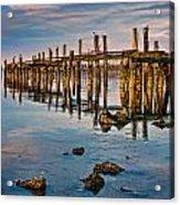 Pylons In Humboldt Bay Acrylic Print