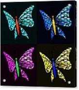 Quad Butterflies Acrylic Print