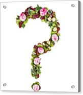 Question Mark Acrylic Print by PhotoStock-Israel