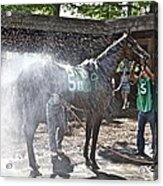 Quick Shower Before The Race Acrylic Print