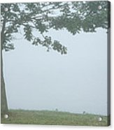 Quiet Fog Rolling In Acrylic Print