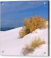 Windswept - White Sands National Monument Acrylic Print