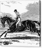 Race Horse, 1857 Acrylic Print