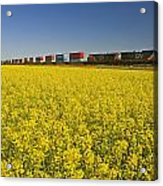 Rail Cars Carrying Containers Passe Acrylic Print