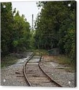 Rail To The Forest Acrylic Print