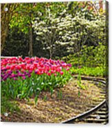 Railroad Beauties Acrylic Print