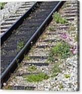 Railroad To Yukon Acrylic Print
