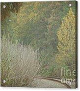 Rails Curve Into A Dreamy Autumn Acrylic Print