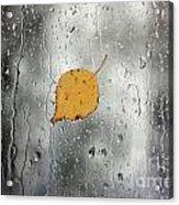 Rain On Window With Leaf Acrylic Print