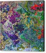 Rainbow Fish Watercolor Abstract Art Acrylic Print