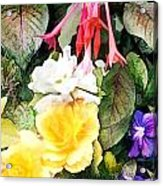 Rainbow Flower Basket Acrylic Print