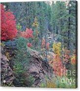 Rainbow Of The Season Acrylic Print by Heather Kirk