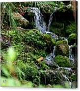 Rainbow Springs Waterfall Acrylic Print
