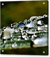 Raindrops On Lily Leafs Acrylic Print