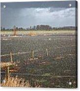 Rainfall Acrylic Print