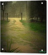 Rainy Daze Again Acrylic Print