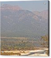 Ramganga River Flowing Through Corbett National Park Acrylic Print